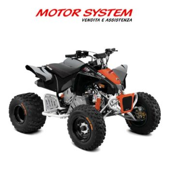 Can Am Youth DS X 90