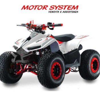 Miniquad-LEM-GRIZZLY-110cc-rosso